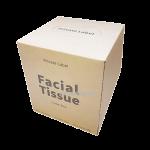 facial tissue cube box